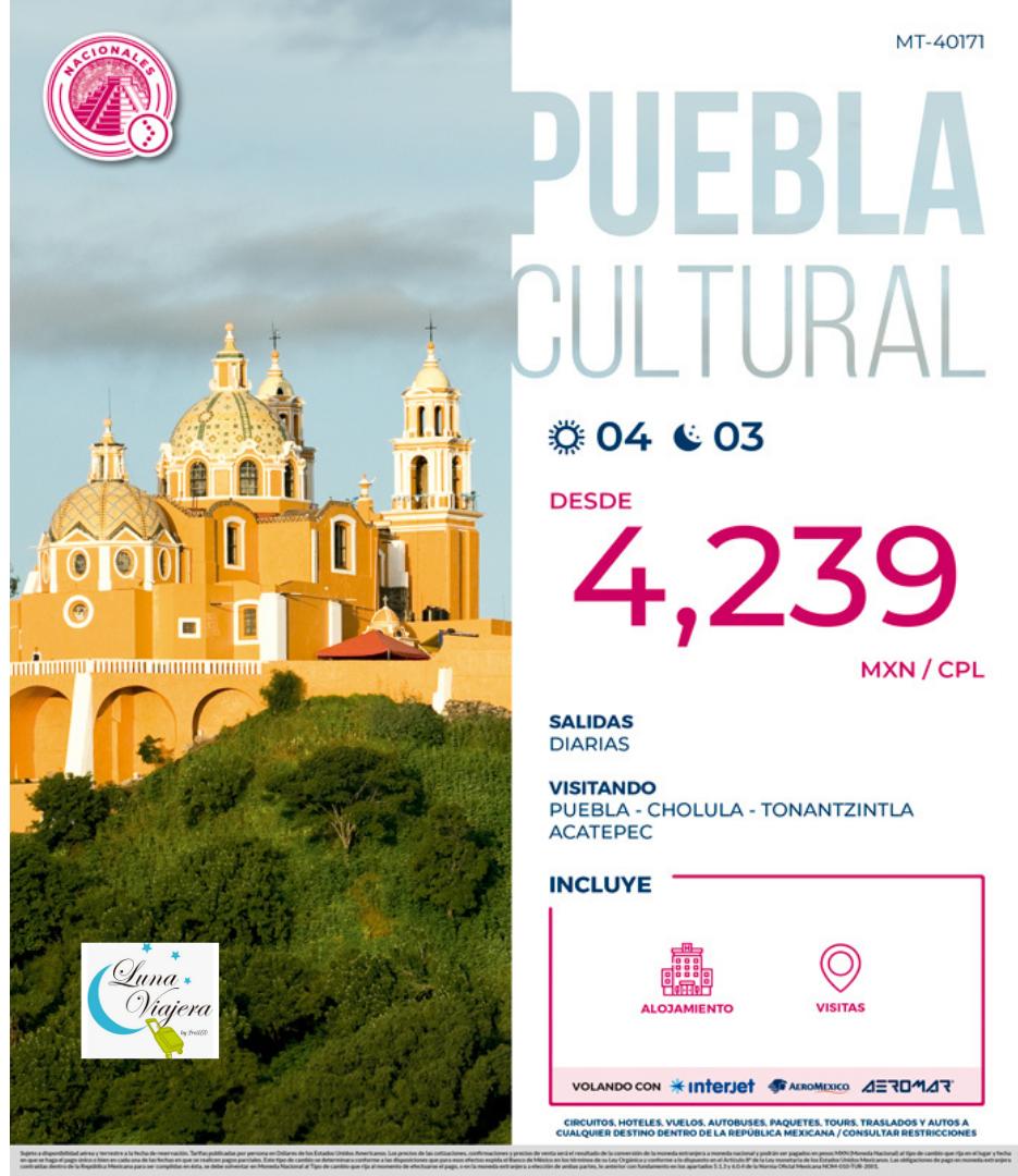 Puebla con logo.png