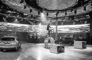 BMW The Reveal 2 - Grey.jpeg