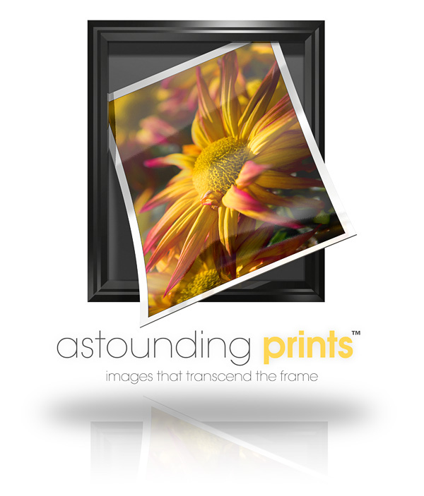Astounding Prints Logo