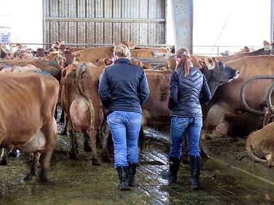 MILK Men Women farmers .jpg