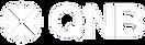 QNB logo white.png