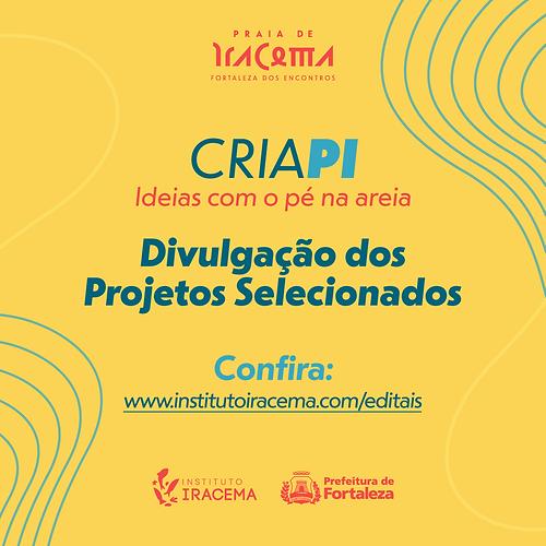 17-02-CRIA-PI-SELECIONADOS-(FEED).png