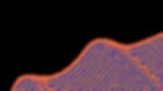 Site-Belchior-(4).png