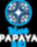 logo BPSKI.png