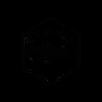TNF_summit_experience_logo_preto_vetor_T