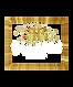 logo white write.png
