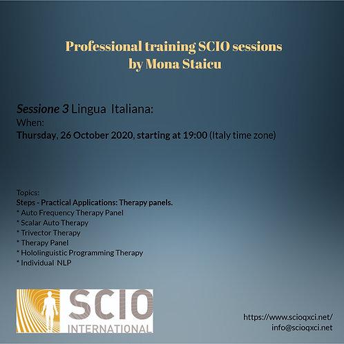 Sessione 3 Lingua Italiana: Professional training SCIO sessions.