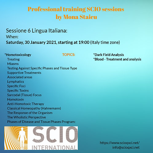 Sessione 6 Lingua Italiana: Professional training SCIO sessions