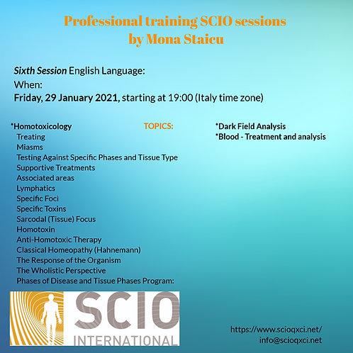 Sixth Session English Language: Professional training SCIO sessions