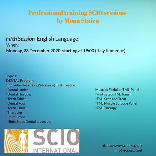 Fifth Session English Language: Professional training SCIO sessions