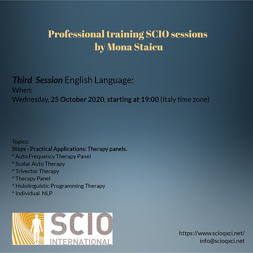 Third Session English Language: Professional training SCIO sessions.