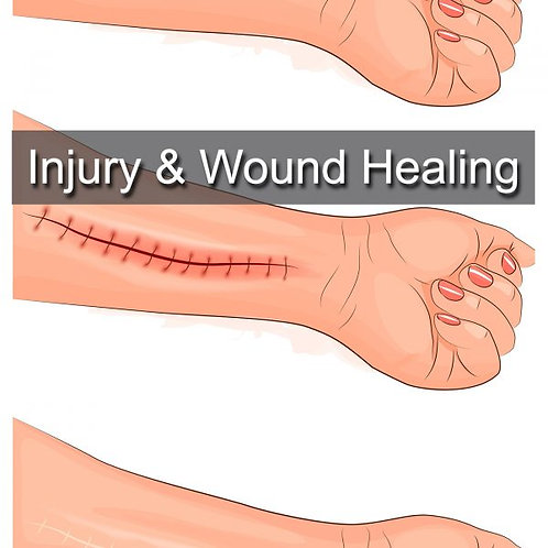 Injury and wound healing