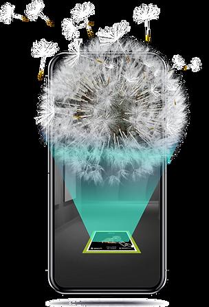 dandelion-mobile-ar.png