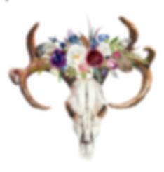 skull floral adjusted.png