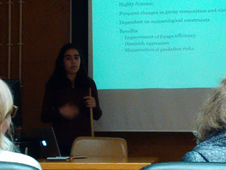 Tess presents her research plans