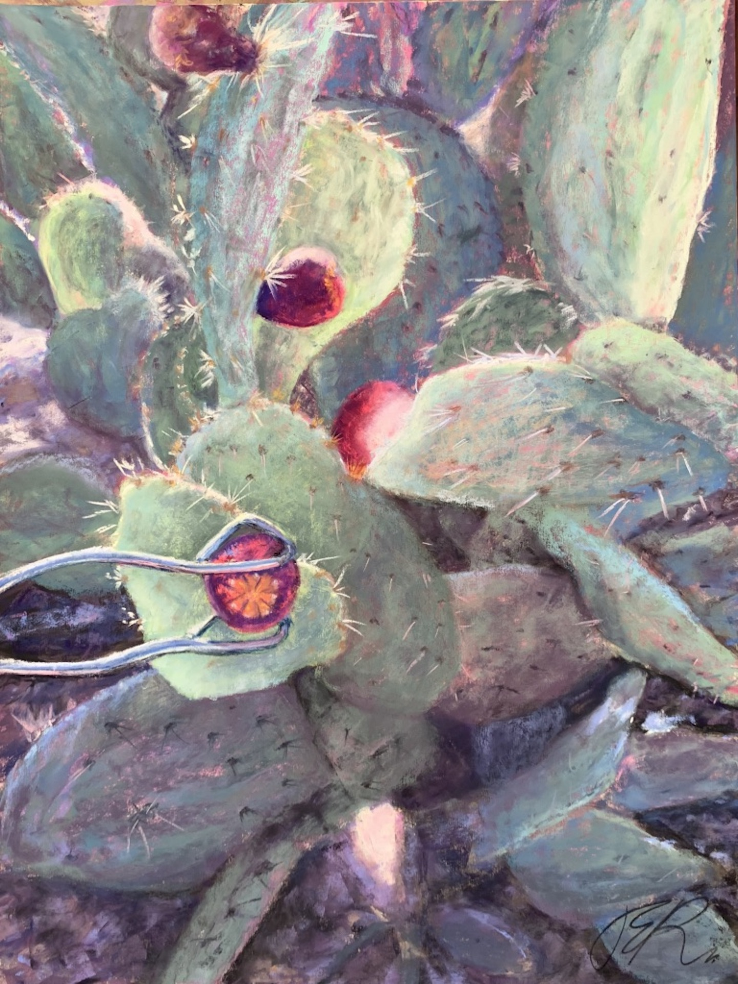 Picking Prickly Pear