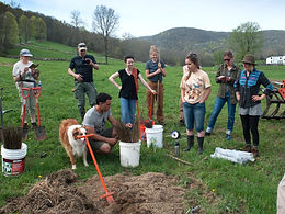 Tree-Planting Field Day