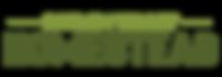 HVH-LOGO-WEB4.png