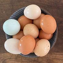 eggsanddairy_edited.jpg