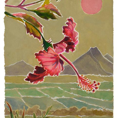 22. Pretty Red Hibiscus, 28x19cm