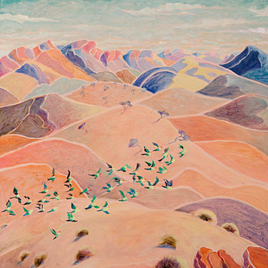 Budgerigars over Larapinta