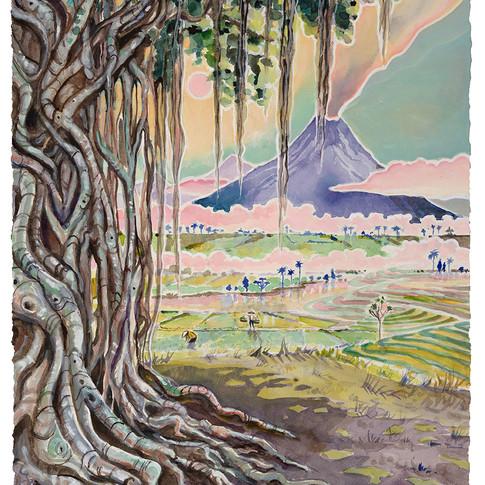 7. Banyan Tree, 54x45cm
