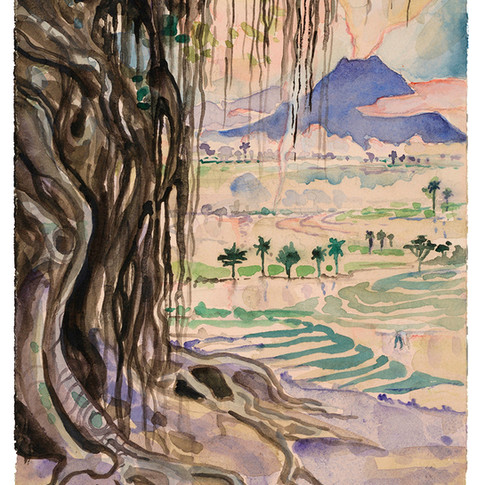 21. Study for Banyan Tree, 28x19cm