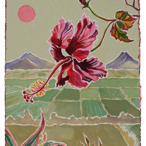 23. Pretty Red Hibiscus 2, 28x19cm