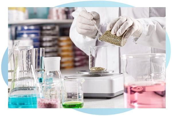 Innovative Product Formulation