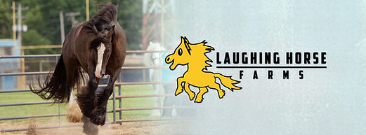 Laughing Horse Farms.jpg