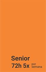 Planos Senior.png
