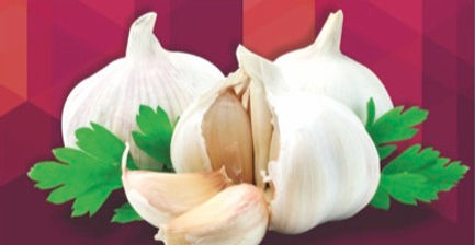 Garlic_edited.jpg