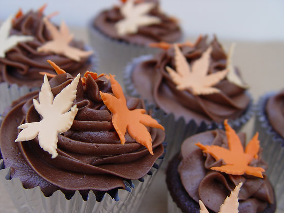 6 Autumn Chocolate Cupcakes