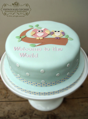 Owl welcome to the world cake