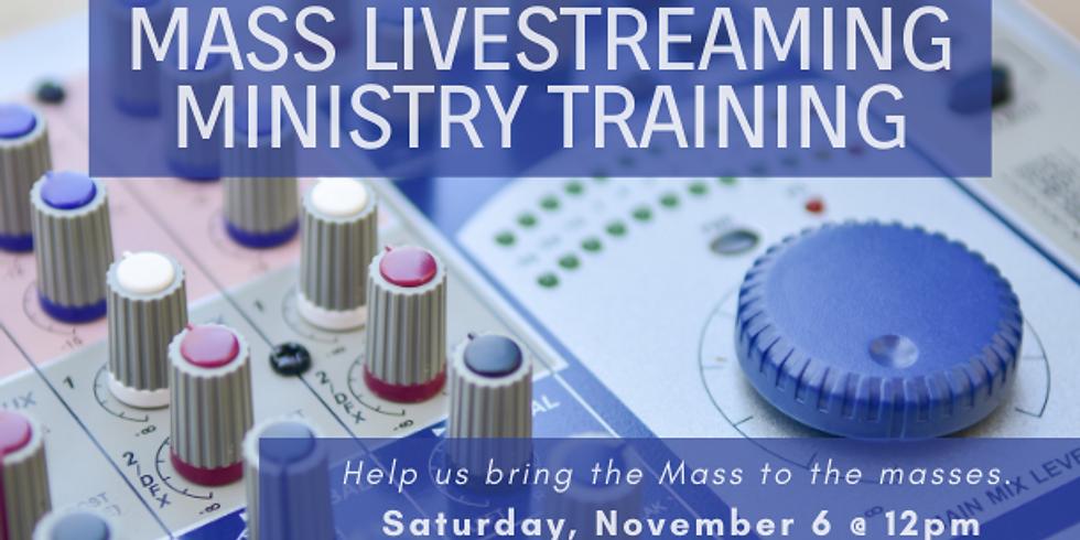 Mass Livestreaming Training