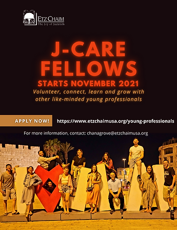 j-care fellows 2020-21.png
