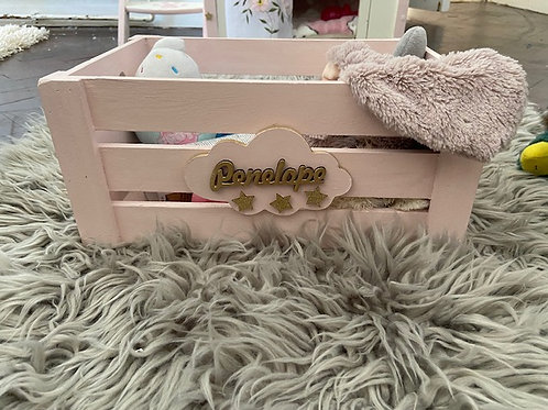 Kids/ Pets Toybox- All sizes