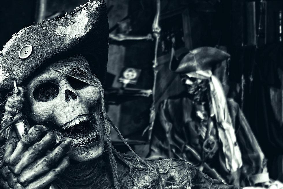 Two Skeleton Pirates Portrait.jpg