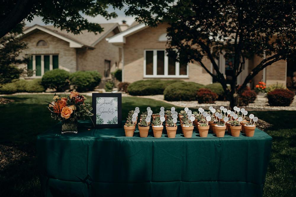 succulent table for driveway bridal shower details