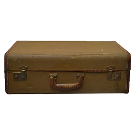 Brown Luggage with Leather Trim