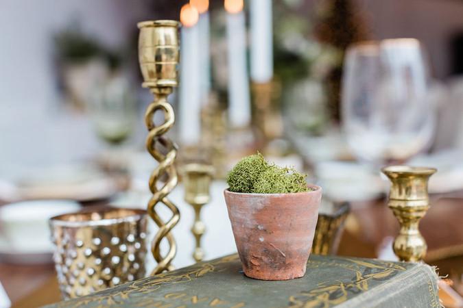 vintage-clay-pot-moss-tablescape