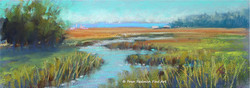 Low Country Marsh