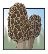 MushroomLogo02Revised.jpg