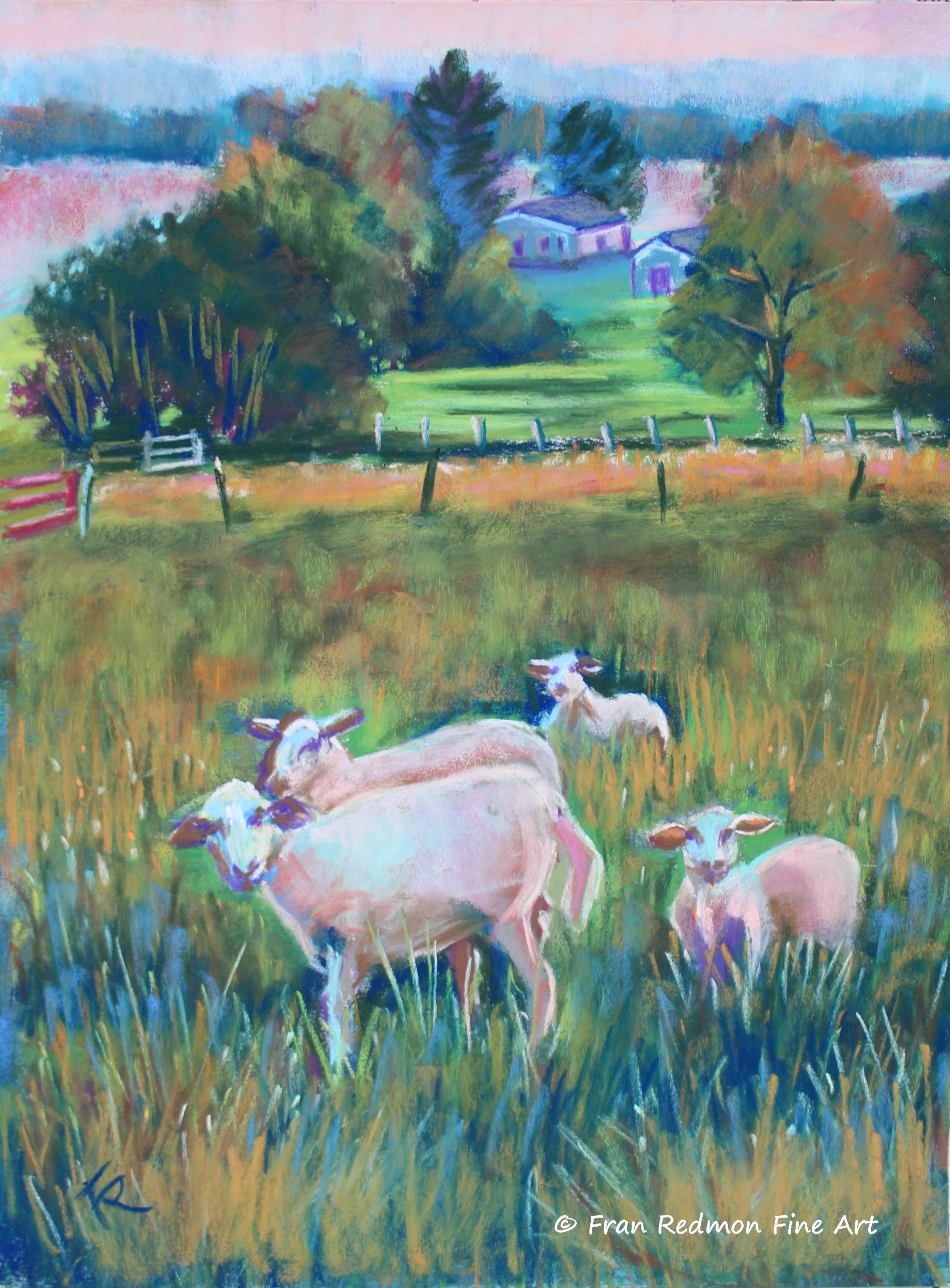 Farmer Joe's Sheep