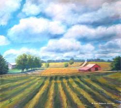 Agrarian Dream