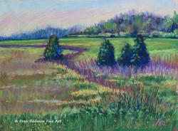 Versailles Meadow