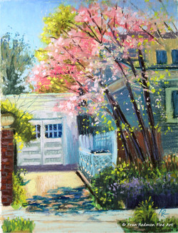 Driveway in Spring