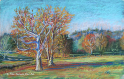 Two Sycamores