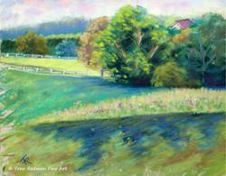 Meadow Dream