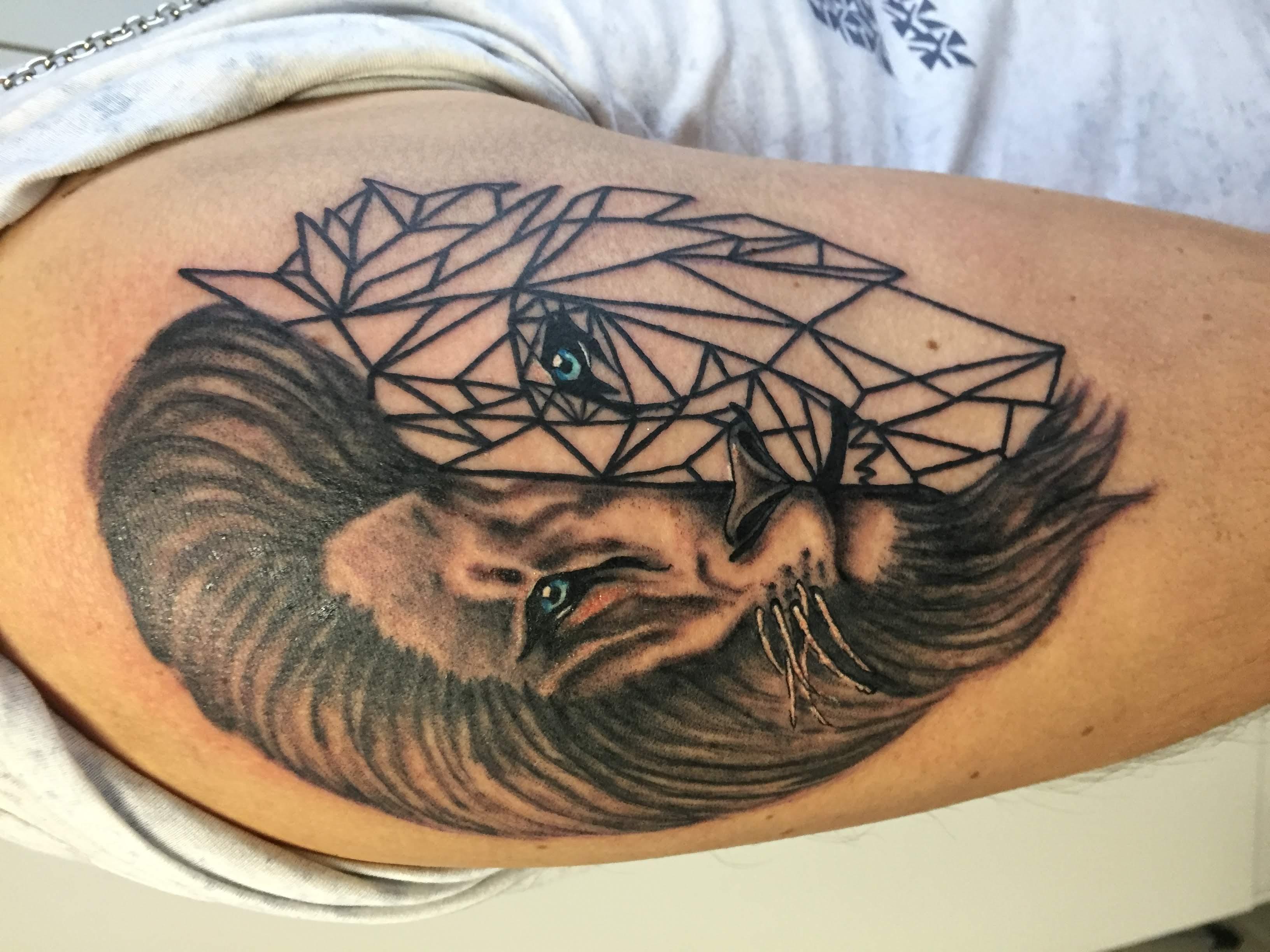 tetovani geometricky lev